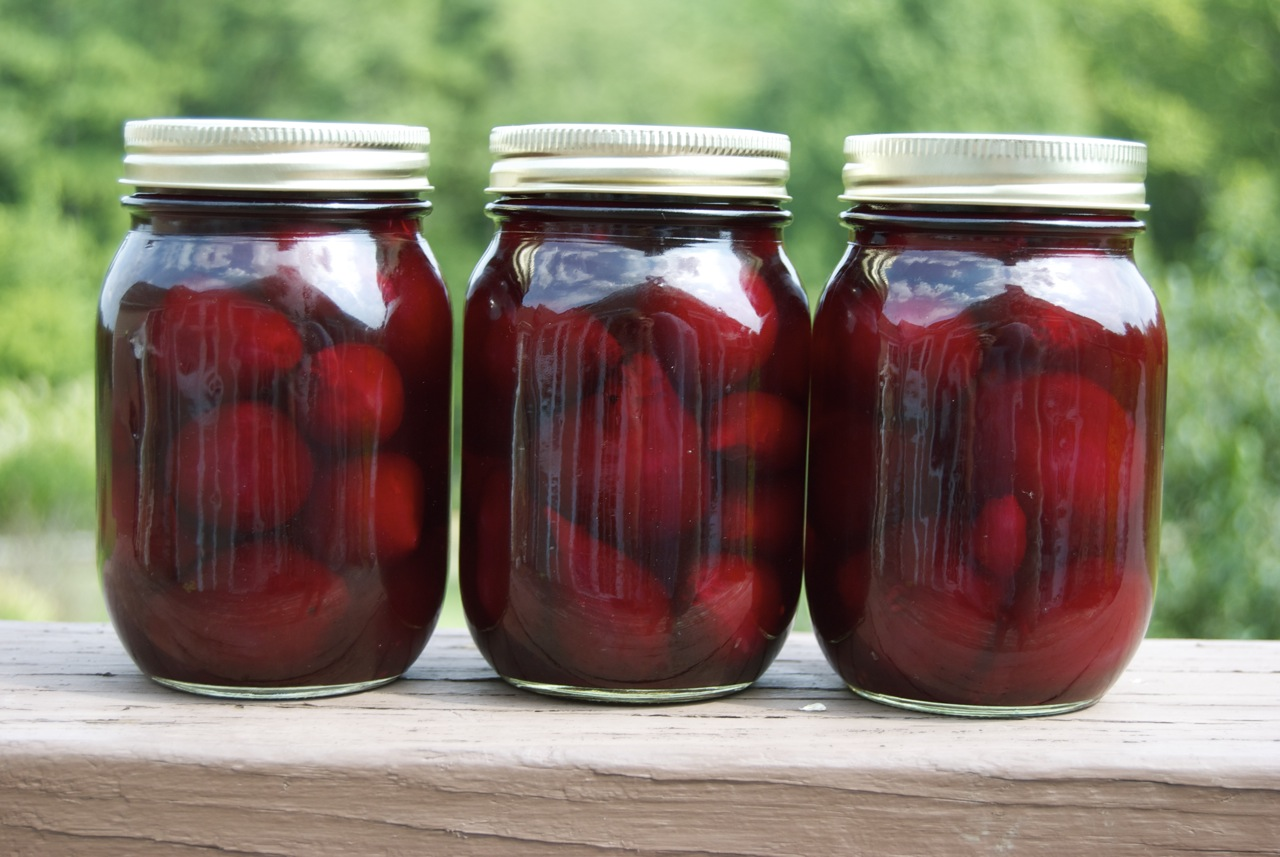 Pickled Beets and Leather Shoes