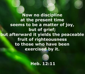 Further Aspects of the God of Abraham, the God of Isaac, and the God of Jacob. Heb. 12:11, Now no discipline at the present time seems to be a matter of joy, but of grief; but afterward it yields the peaceable fruit of righteousness to those who have been exercised by it