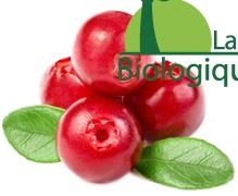 La cranberry bio ou canneberge bio