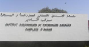 Journée de sensibilisation sur Tuta Absoluta à Agadir