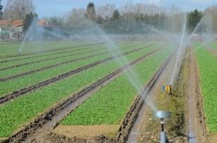 Oujda: Un projet d'irrigation en eaux usées traitées