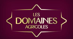 """""""Les Domaines"""" inaugure à Rabat un nouveau concept store inédit au Maroc"""