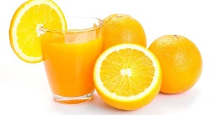 Premières oranges marocaines Midknight aux Pays-Bas