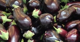 La Russie interdit les aubergines turques