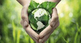 Chichaoua sensible au développement durable et au changement climatique