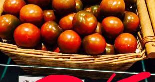 fruit_logistica_photo_tomates