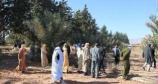 INRA Maroc invité à la station expérimentale d'Errachidia