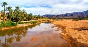 Quel avenir pour les oasis du Maroc ?