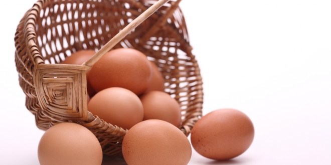 Santé: Les bienfaits des oeufs pour notre organisme