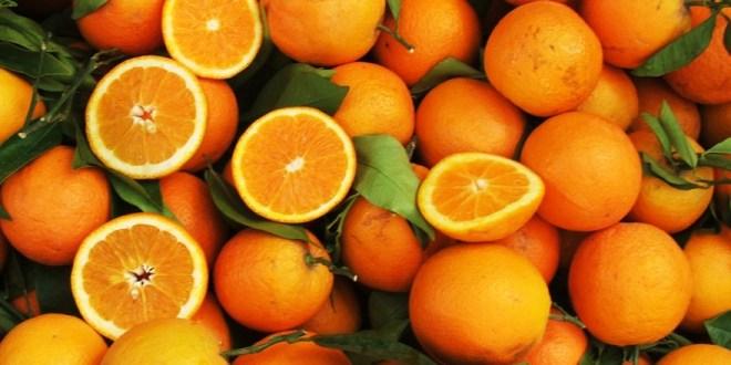 Hausse des exportations d'oranges du Maroc en Afrique de l'Ouest