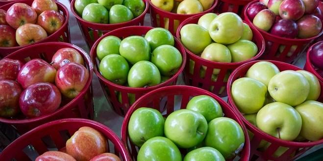 La pomme, un fruit à succès