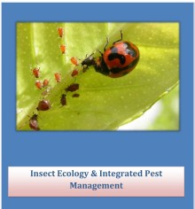cover of Insect Ecology & Integrated Pest Management