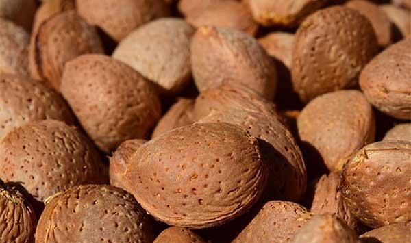 almonds-1608184_640