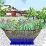 Huertos de Lluvia para aprovechar el agua pluvial