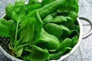 تفريز السبانخ الخضراء