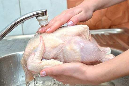 تحذير-للسيدات-احذري-غسل-الدجاج-قبل-الطهو