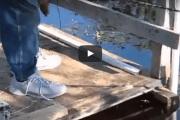 فيديو: رجل يطعم ثعبان ضخم بيديه المجردتين - أحلى عالم