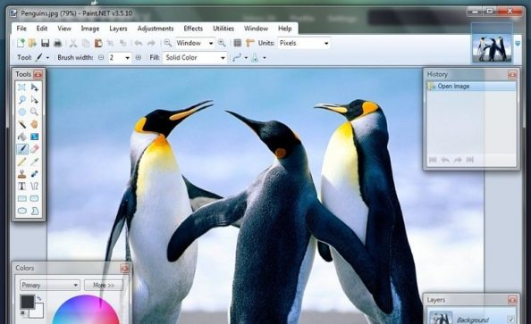 تحميل برنامج تحرير الصور وتعديلها باينت دوت نيت Paint.NET