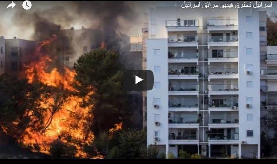 شاهد اسرائيل تحترق مجموعة من الفيديوهات التي تظهر حجم الكارثة والحرائق