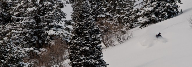 A backcountry telemark skier making a turn in powder snow in Utah in the trees.
