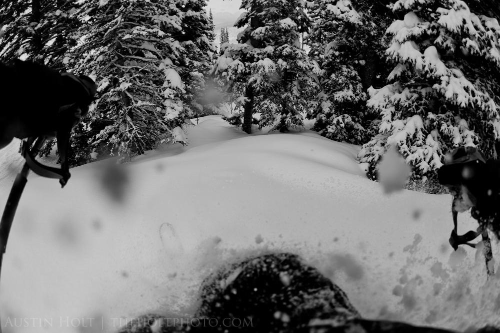 Tree skiing at Solitude Resort on a powder day