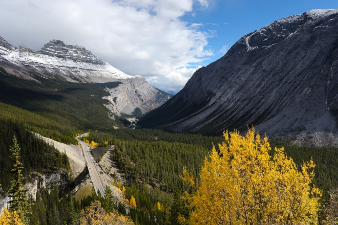 Looking down over mountains and fall foliage on the Glacier Parkway in Canada