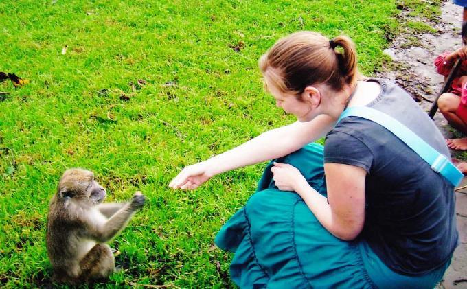 turis memberi makan kera di pulau kembang
