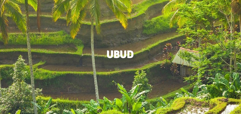 the exotic culture of ubud bali indonesia