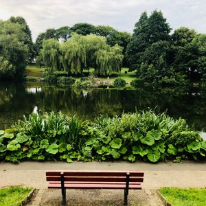 Bench, Sykes Reservoirs, Edgeley, Stockport