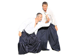 Aikido-Class-v1