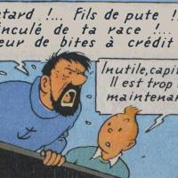 Les insultes du Capitaine Haddock