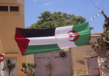 palestine algerie
