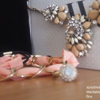 Wantable June |Accessories Box