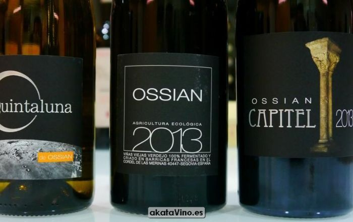 Bodega Pago de Carraovejas y Ossian Guia Xtreme 2016 © akataVino (38)