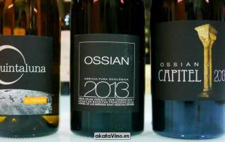 Ossian Top 10 Mejores Blancos 2016 Bodega Pago de Carraovejas y Ossian Guia Xtreme 2016 © akataVino (38)