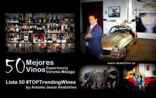 Cartel 50 Mejores Vinos Experiencia Verema Malaga AkataVino.es 1200x