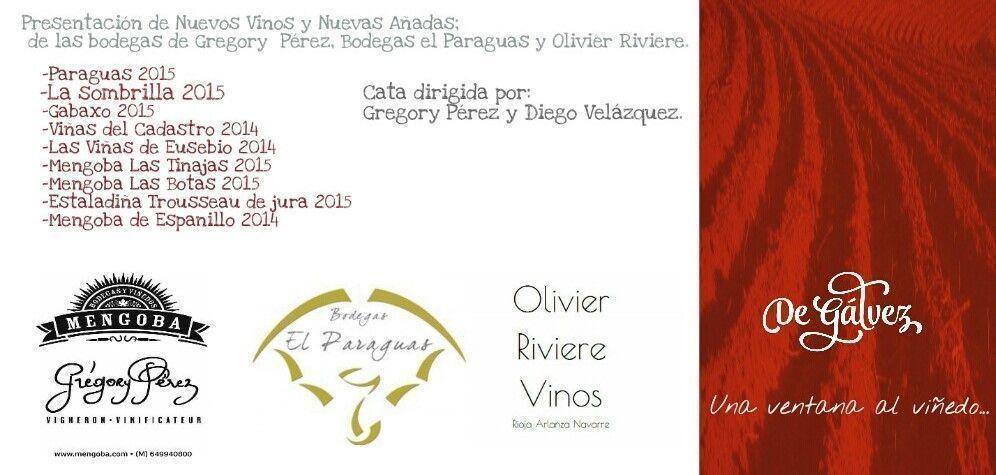 cata-presentacion-vinos-de-galvez-gregory-perez