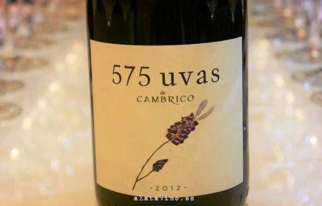 Vino 575 uvas 2012 Bodegas Cambrico Guia de Vinos Xtreme 2015 © akatavino.es (8)