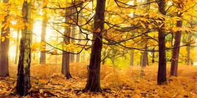 A Topaz Autumn