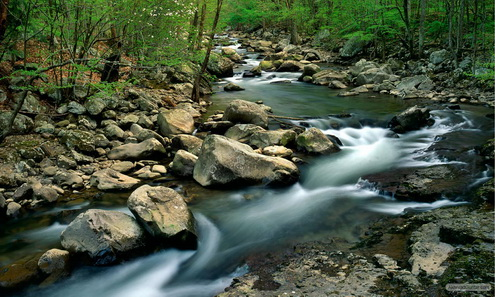 preview-sungai