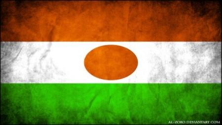 التواصل مع الانصار بالنيجر