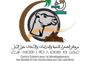 مركز الصحراء للتنمية والدراسات والأبحاث حول الإبل يحتفي باليوم العالمي للإبل