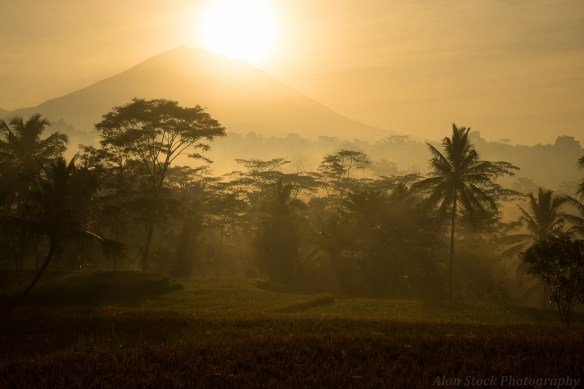 AlanStockPhotography-Bali-landscape-Photography-Workshop-Sunrise-Fields-Rice-David-Metcalf-Volcano-rays-04