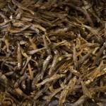 AlanStockPhotography-Bali-market-dried-fish-closeup-many