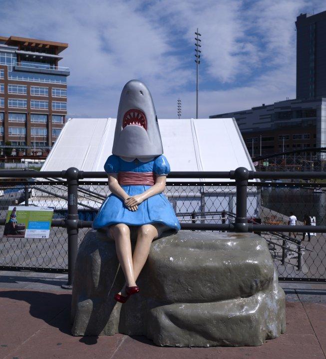 Shark Girl   Albright-Knox