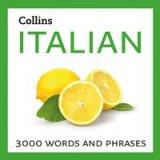 dizionario italiano inglese
