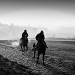 Early morning gallop