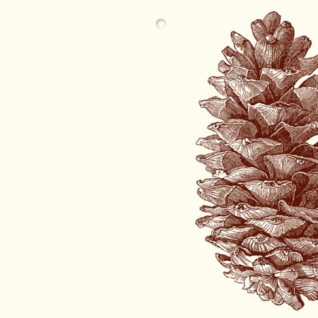 gc89-Pinecone-Gift-Tag