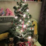 christmas-tree-675x900