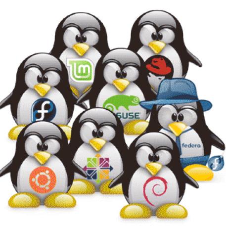 Resultado de imagem para linux administração